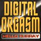 $ Digital Orgasm / Hello Hurray (WL 039) YYY271-3162-22-42